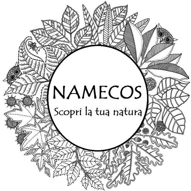 Namecos Trekking